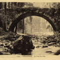 Gerardmer ponts des fees 1930