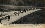 Grand-Ballon montee vers Goldbach 1915-1